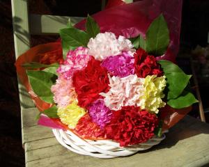 12本のカーネーションの花束